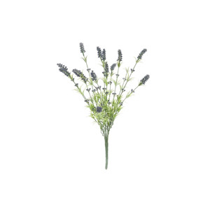 Blütenzweige & Gestecke