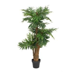 Palmbäume