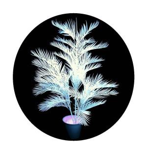 UV-aktive Pflanzen