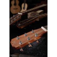 J.N.Guitars ASY-D