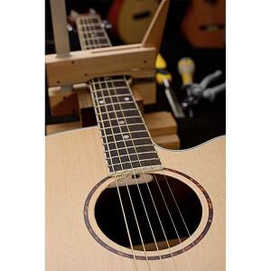 J.N.Guitars ASY-ACE