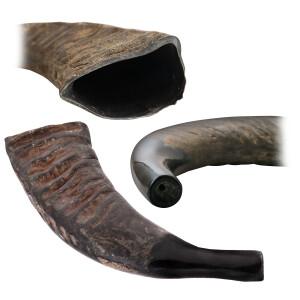 TERRÉ Büffelhorn 43cm